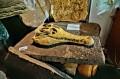 Czaszka prehistorycznego gada
