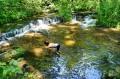 Zabawa w wodzie przy kaskadach