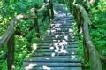 Zejście po schodach ze ścieżki górnej