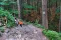 Początek szlaku pieszego