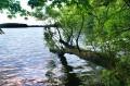 Jezioro Czos