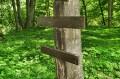 Krzyż prawoslawny na drzewie