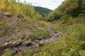 Rzeka przy sztolni