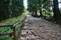 Kamienista droga do wodospadu ze Szklarskiej Poręby