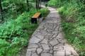 Ścieżka spacerowa do zamku
