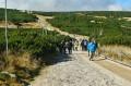 Szlak z Kopy