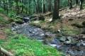 Potok przy żóltym szlaku