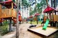 Trasa dziecięca w parku linowym