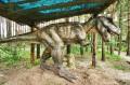 Ruchomy i upierzony T-rex