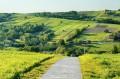 Widok z góry, droga ze wsi do pomnika