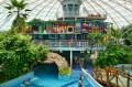Aquapark - widok na grotę i plac zabaw