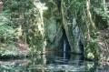 Staw rybny i wodospadzik