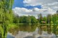 Park pałacowy wiosną