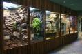 KRAKÓW - Aquarium i Muzeum Przyrodnicze