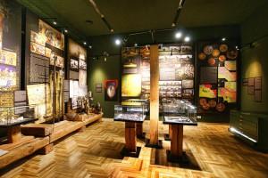 OPOLE - Muzeum Śląska Opolskiego - Gmach Główny