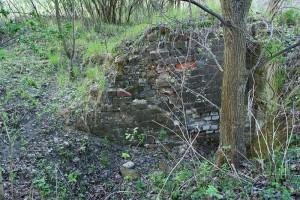 MAŁA NIESZAWKA - Relikty zamku krzyżackiego