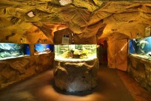 REWAL - Oceanarium