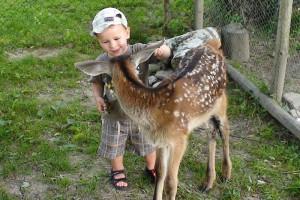 LISZNA - Leśne mini-zoo
