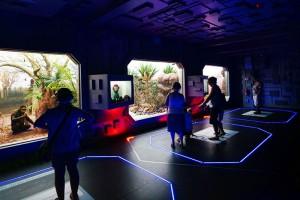 KRASIEJÓW - Park Nauki i Ewolucji