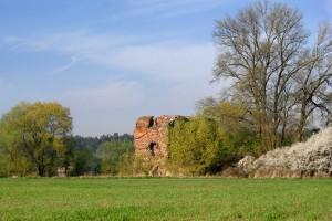 ZŁOTORIA - Ruiny zamku nad Wisłą