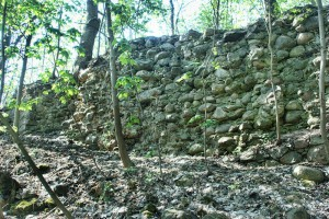 LIPIENEK - Relikty  zamku krzyżackiego