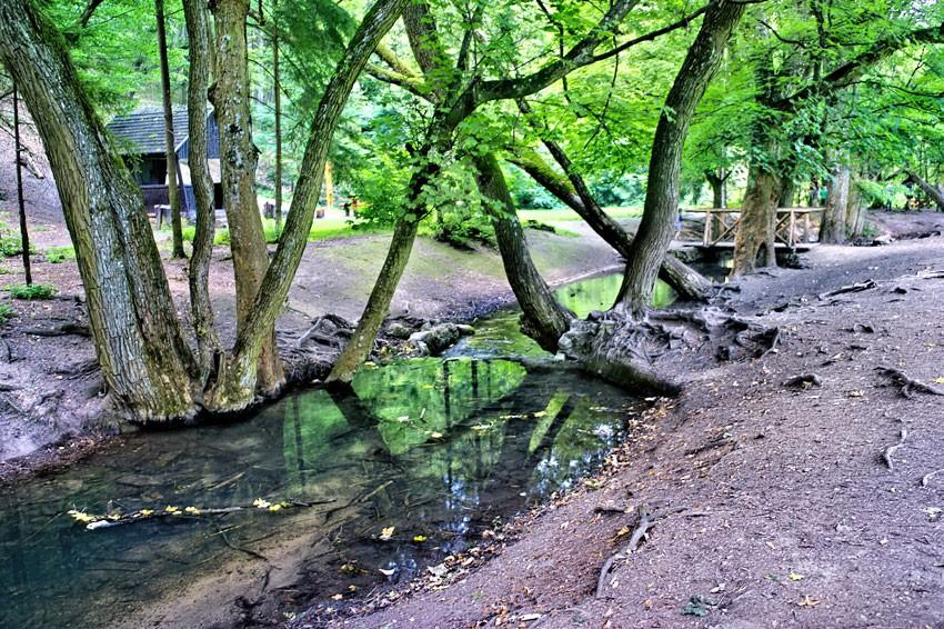 Spokojny potok przy końcowym przystanku