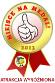 Miejsce na medal 2013